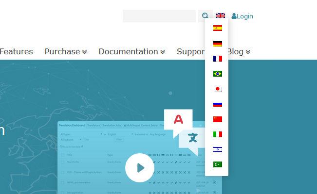 change language flags
